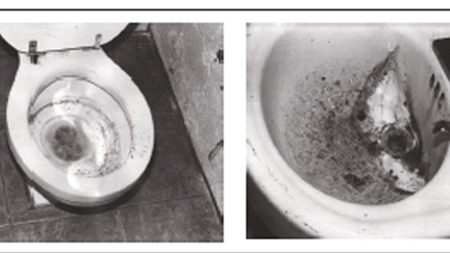 Shown here are pictures of the bathroom used by an elder abuse victim in Missouri. (GAO.gov)
