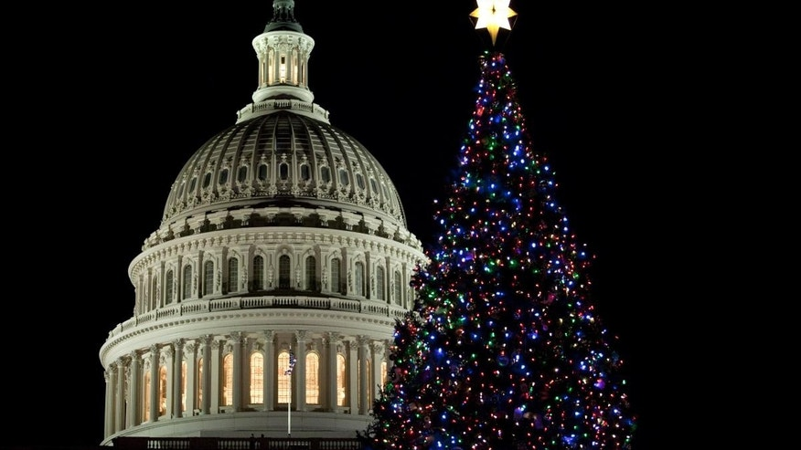 The U.S. Capitol Christmas tree is seen after a lighting ceremony on Tuesday, Dec. 7, 2010, in Washington. (AP Photo/Evan Vucci)