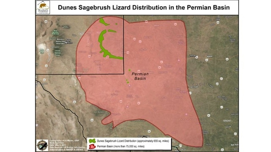 Map: The Permian Basin stretches from New Mexico into West Texas. The Center for Biological Diversity reported the Dune Sagebrush Lizard lives in  one-percent of the basin.