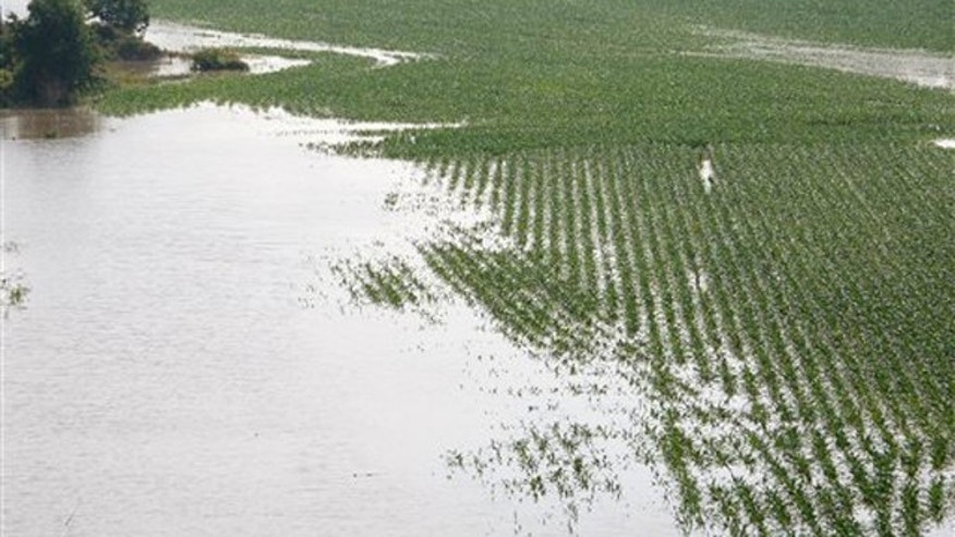 Farm lands north of Yazoo City, Miss., begin to go under water May 9.
