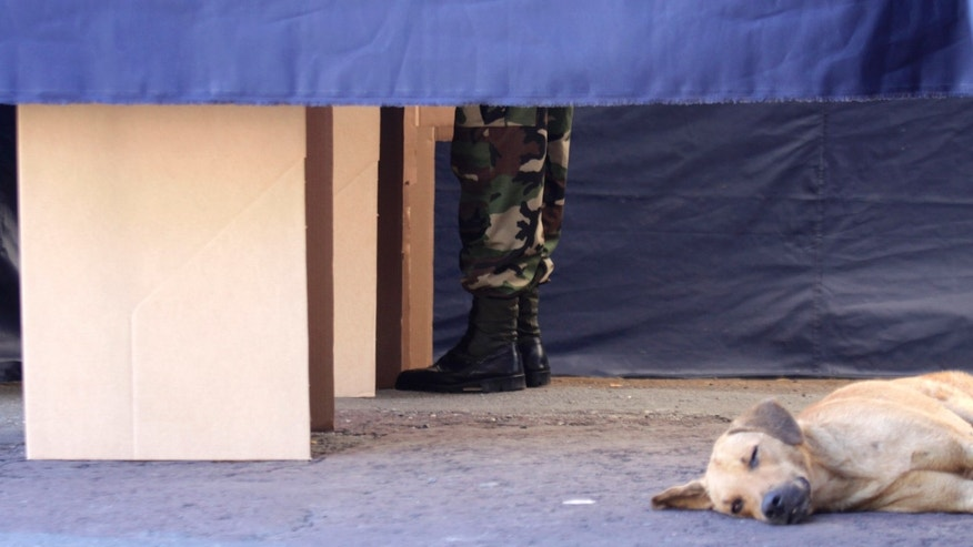 A dog naps in a school parking lot as a Nicaraguan Army soldier casts his vote at a makeshift polling station during general elections in Managua, Nicaragua, Sunday Nov. 6, 2011. Nicaraguan president and one-time Sandinista revolutionary Daniel Ortega appears headed for a third term victory in an election that his critics say could be the prelude to a presidency for life. (AP Photo/Miguel Alvarez)
