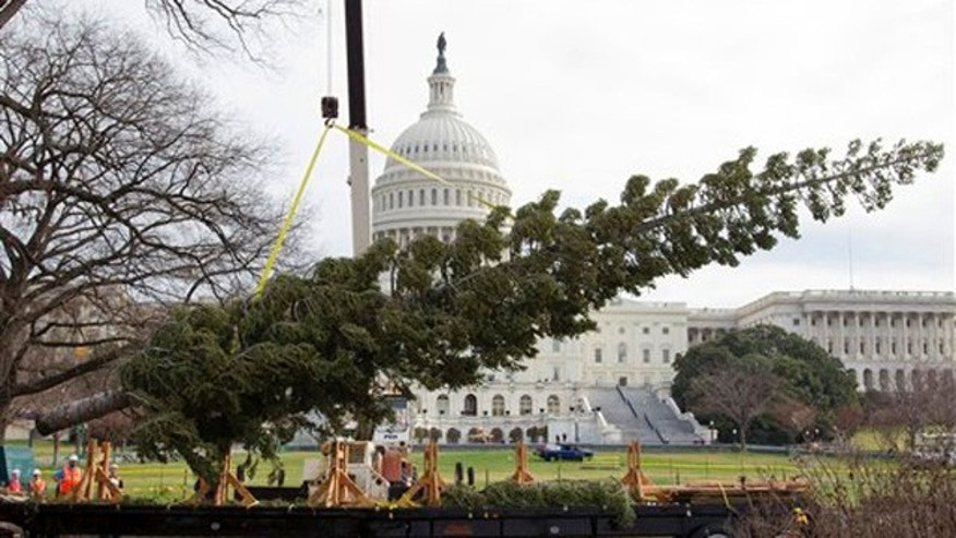 Nov. 28, 2011: The 2011 Capitol Christmas Tree arrives in Washington.