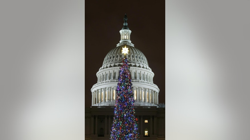 2011 U.S. Capitol Christmas Tree (AP Photo)