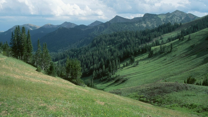 In this 1999 photograph, the Wyoming Range is seen. The state's largest roadless area had been targeted for oil and gas leasing, but those efforts were withdrawn due to Congressional action. (Courtesy: Biodiversity Conservation Alliance)