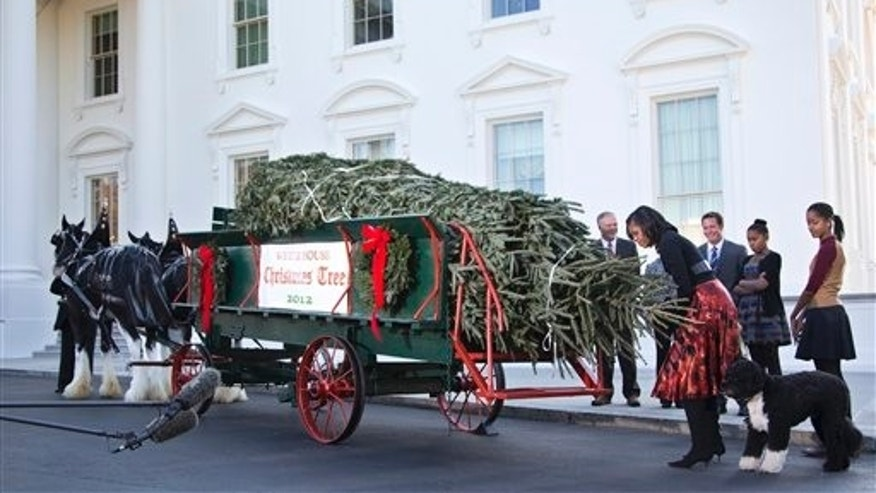 Nov. 23, 2012: First lady Michelle Obama, accompanied by daughters Sasha, second from right, Malia, right, and first dog Bo, smells the official White House Christmas tree, a 19-foot Fraser Fir from Jefferson, N.C., upon its delivery at the North Portico of the White House.