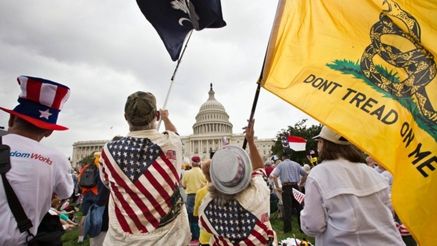 FILE: June 19, 2013: Tea Party activists rallying in front of the U.S. Capitol in Washington, D.C.