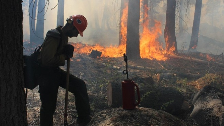FILE: Sept. 4, 2013: A  Hotshot fire crew member rests near a controlled burn operation at Horseshoe Meadows, near Yosemite National Park in California. Photo by U.S. Forest Service.