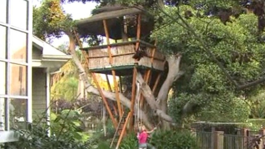 A Los Angeles woman is determined to save a treehouse on her property after receiving a notice from city officials ordering her to take it down.