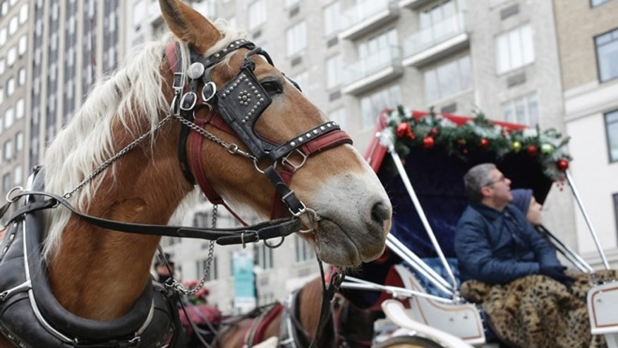 Dec. 31, 2013: Passengers enjoy a horse-drawn carriage ride near Central Park on New Year's Eve day.
