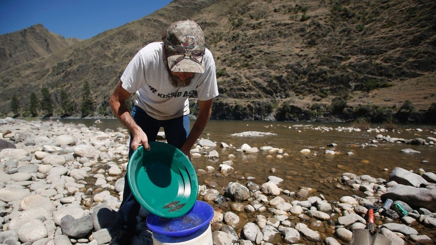 July 3, 2014: B. Dennis Dutcher pans for gold along the Salmon River near Riggins, Idaho.