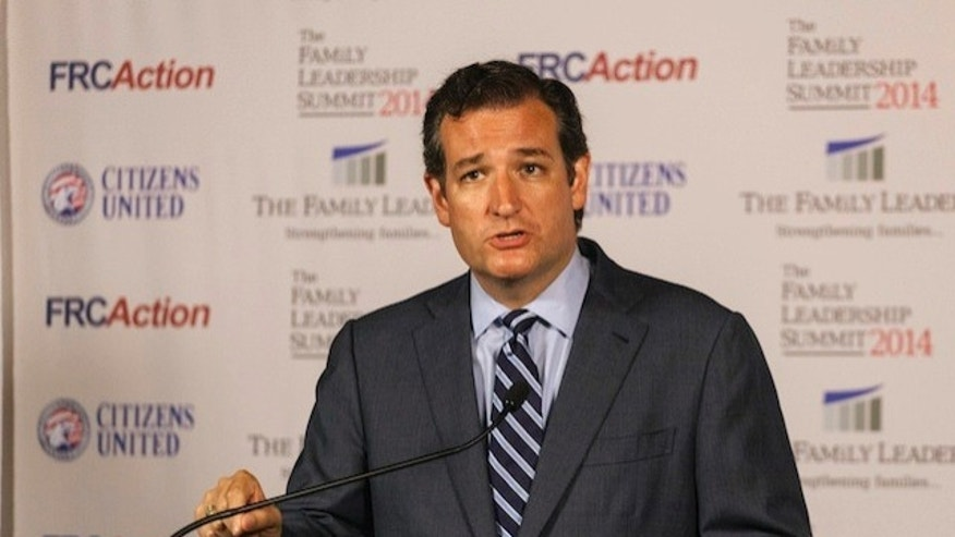 Texas Sen. Ted Cruz speaks after the Family Leadership Summit in Ames, Iowa August 9, 2014. (REUTERS/Brian Frank)