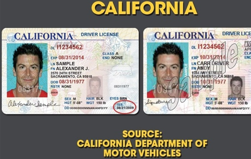 Pictures drivers licenses porn
