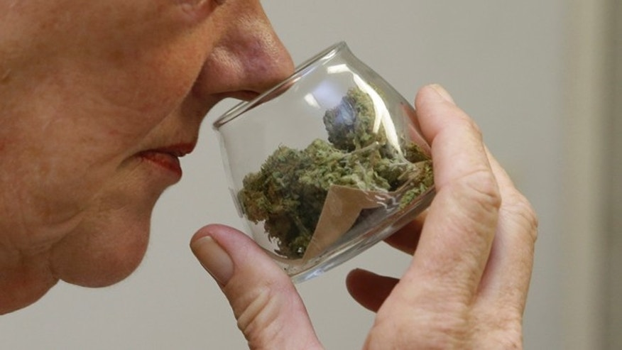 FILE - In this Aug. 19, 2015 file photo,  a customer checks the aroma of a jar of medicinal marijuana at Canna Care, a medical marijuana dispensary in Sacramento, Calif.  Gov. Jerry Brown signed a trio of bills, Friday, Oct. 9, 2015, that created the first statewide licensing and operating rules for pot growers, manufacturers of cannabis-infused products and retail weed outlets.(AP Photo/Rich Pedroncelli, File)