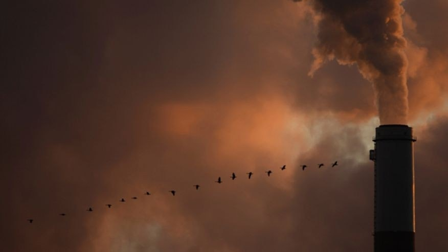 Jan. 10, 2009: A flock of geese fly past a smokestack at the Jeffery Energy Center coal power plant near Emmitt, Kan.
