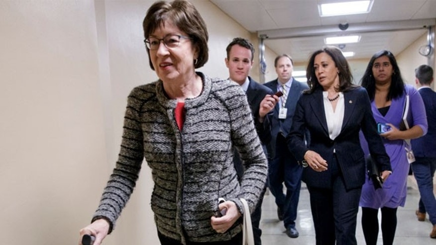 Protestors Call on Collins to Hold Open Access Town Hall