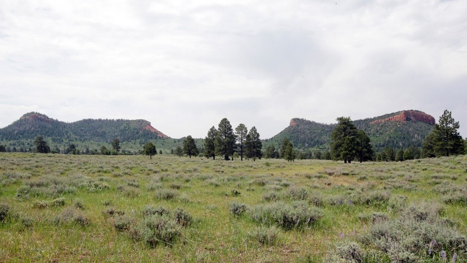 Bears Ears National Monument near Blanding, Utah, is one of four monuments recommended for reduction by the Interior Secretary