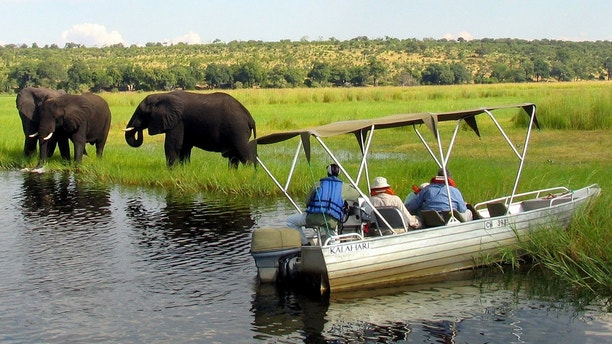 Foreign tourists in safari riverboats observe elephants along the Chobe river bank near Botswana's northern border where Zimbabwe, Zambia and Namibia meet, March 4, 2005. REUTERS/Peter Apps/File Photo - D1BEUCNYETAB