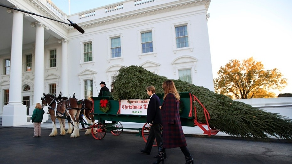 First lady Melania Trump and her son Barron Trump, look at the Wisconsin-grown Christmas Tree at the North Portico of the White House in Washington, Monday, Nov. 20, 2017. The tree will be displayed in the White House Blue Room. (AP Photo/Manuel Balce Ceneta)