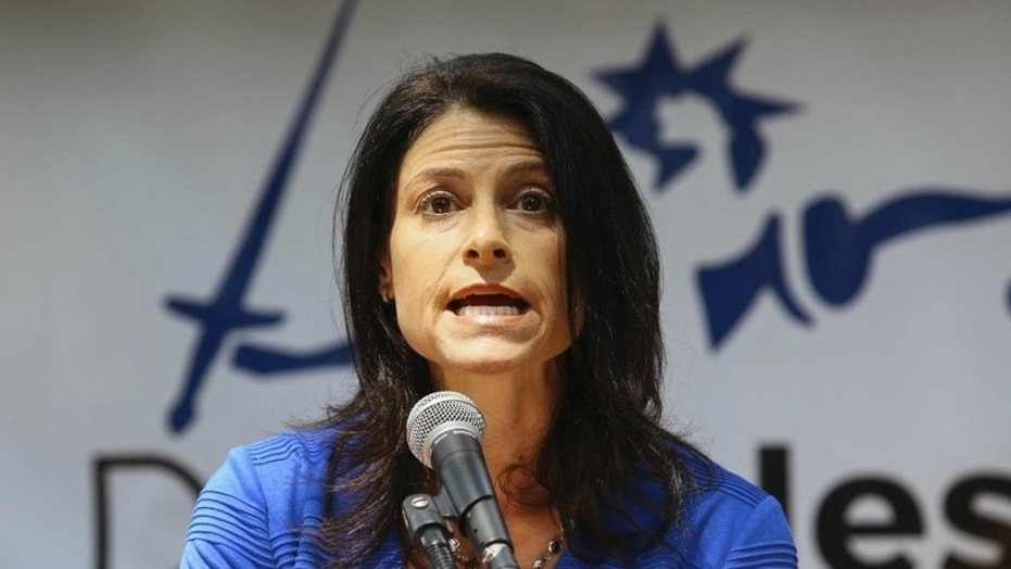 Dana Nessel announces her decision to run for Michingan attorney general, in Ann Arbor, Mich., Aug. 15, 2017.