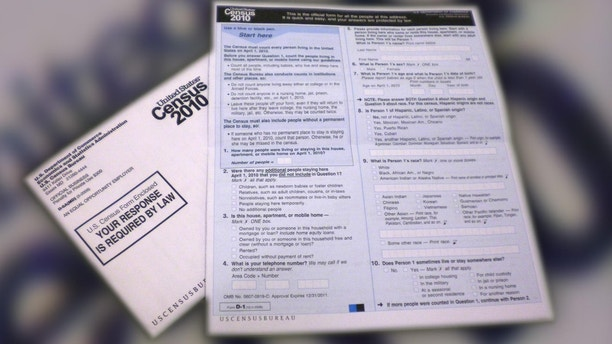 census papers 2010
