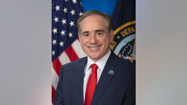 david shulkin headshot