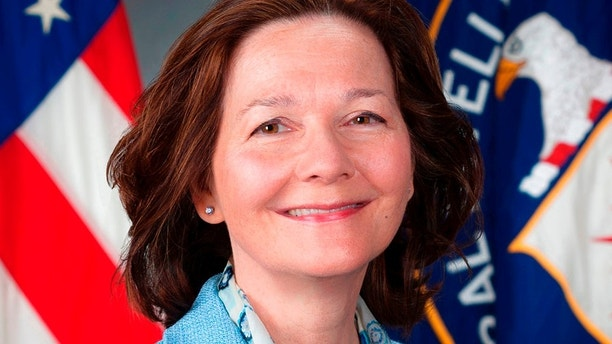 This March 21, 2017, photo provided by the CIA, shows CIA Deputy Director Gina Haspel. Senate Democrats are demanding the CIA release more information about the ex-undercover operative President Donald Trump nominated to direct the spy agency. Democrats say Haspel no longer works undercover and the public has a right to know more about her involvement in the harsh interrogation of terror suspects after 9/11. The CIA has pledged to release more information, but it's not clear if it will share details Democrats seek to illuminate Haspel's clandestine work.(CIA via AP)