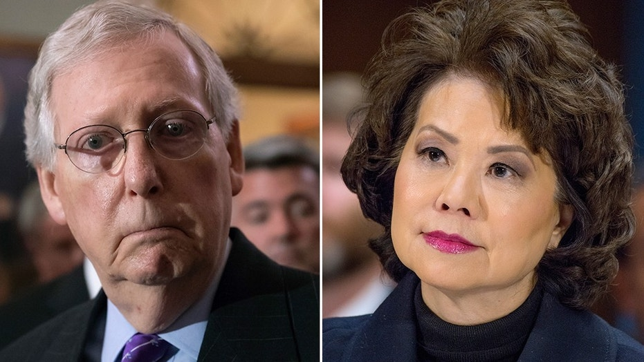 """Transportation Secretary Elaine Chao tried to intercede between protesters and her husband, Senate Majority Leader Mitch McConnell, as they continually asked McConnell why he was """"separating families,"""" at an event in Washington, D.C. on Monday."""
