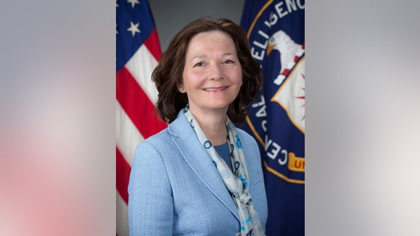 Gina Haspel, a veteran CIA clandestine officer picked by U.S. President Donald Trump to head the Central Intelligence Agency, is shown in this handout photograph released on March 13, 2018. CIA/Handout via Reuters  ATTENTION EDITORS - THIS IMAGE WAS PROVIDED BY A THIRD PARTY. - RC1B163843E0