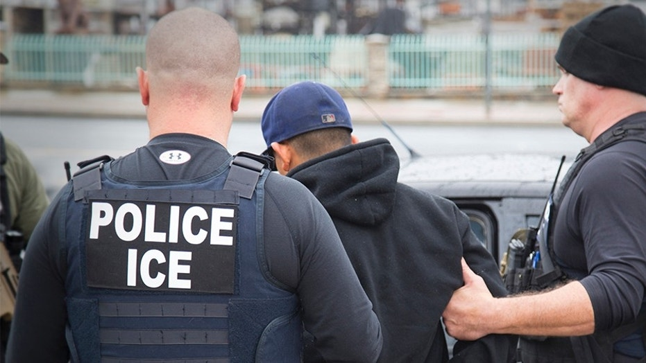 U.S. Immigration and Customs Enforcement (ICE) agents arrest foreign nationals during a targeted enforcement operation, Feb. 7, 2017.