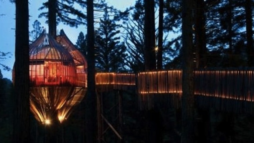 AOL Real Estate/Redwoods Treehouse