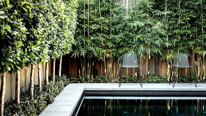 Modern Pool / Houzz