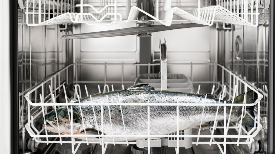 salmon in dishwasher