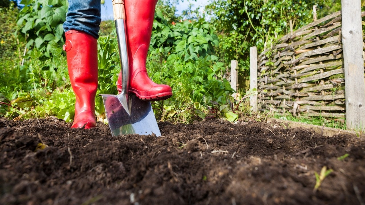 4 Fall Yard Maintenance Chores to Tackle Now (and 1 to Skip)