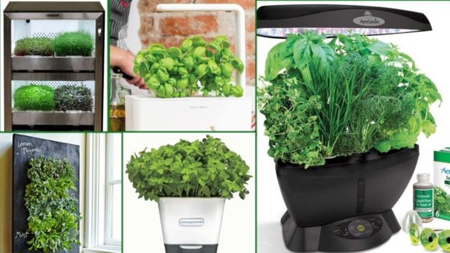 Best Indoor Herb Garden Kits Even Die Hard Plant Killers Cant