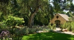 Houzz_NativePlants2