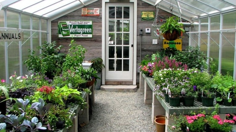 Houzz_Greenhouse2