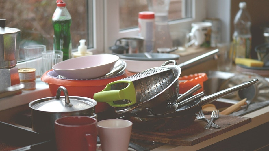 Keep bugs at bay with these easy cleaning and organization tips.