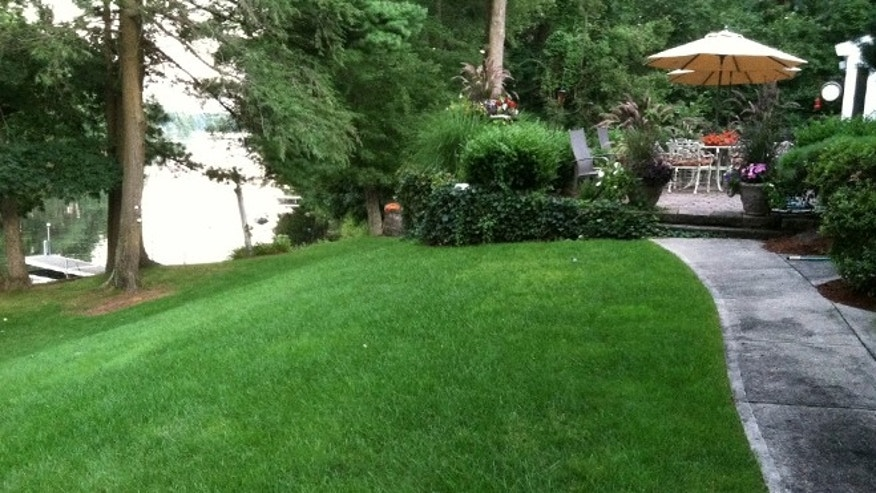 A lakeside lawn using Pearl's Premium is lush, healthy -- and requires a quarter as much water as comparable grasses.