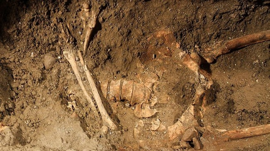"A human skeleton is seen at the excavation of a grave inside the medieval Convent of Saint Ursula in Florence. Archaeologists are searching the burial site for Lisa Gherardini, wife of the wealthy Florentine silk merchant Francesco del Giocondo, the model who inspired Leonardo da Vinci's painting ""The Mona Lisa."""
