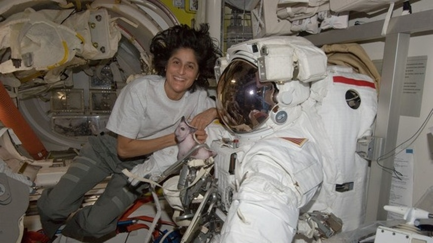 NASA astronaut Sunita Williams, Expedition 32 flight engineer and commander of the International Space Station's Expedition 33 crew, poses for a photo with her spacesuit ahead of an Aug. 30, 2012, spacewalk.