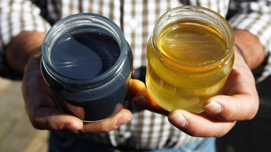 October 5, 2012: French apiarist Andre Frieh holds a sample of normal honey (right) besides a blue colored one (left) at his home in Ribeauville near Colmar, Eastern France.