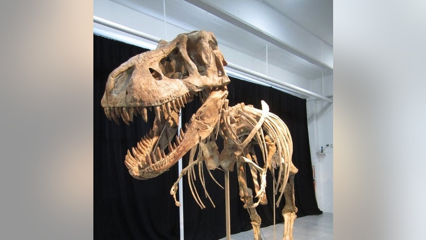 This dinosaur, a relative of Tyrannosaurus rex, is the subject of legal battle over whether or not it can be sold in the U.S. The president of Mongolia says it was almost certainly smuggled out of the country.