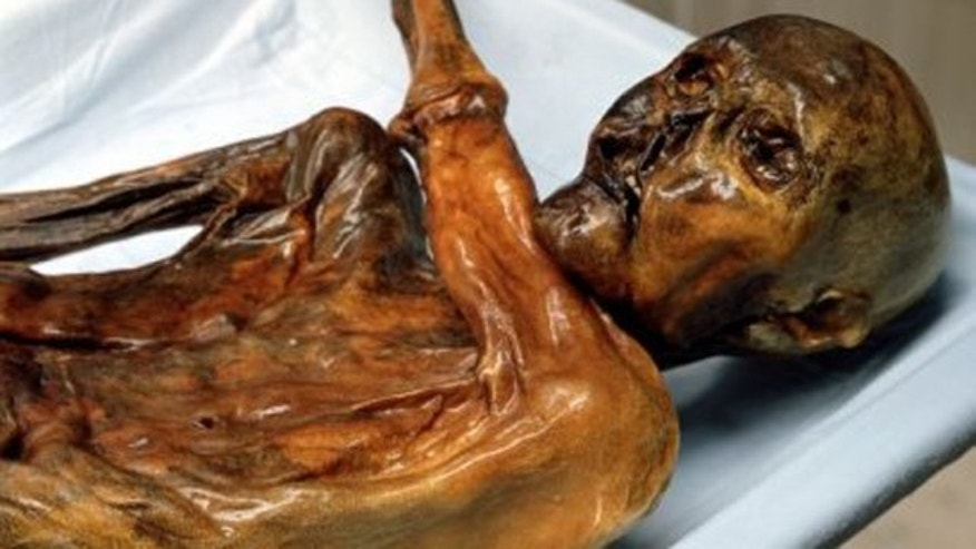 Ötzi the Iceman, a well-preserved natural mummy of a Chalcolithic (Copper Age) man from about 3300 BC, who was found in 1991 in the Schnalstal glacier in the Ötztal Alps, near Hauslabjoch on the border between Austria and Italy.