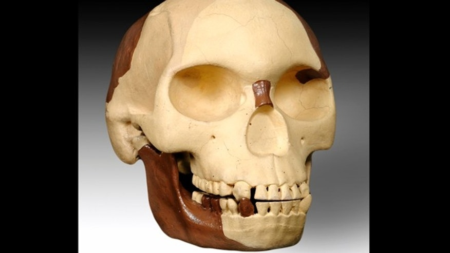 The Piltdown skull, an archaeological hoax that fooled scientists for decades. A century on, researchers are determined to find out who was responsible for it.