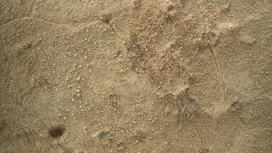 This image from the Mars Hand Lens Imager (MAHLI) on NASA's Mars rover Curiosity shows details of rock texture and color in an area where the rover's Dust Removal Tool (DRT) brushed away dust that was on the rock. Image taken on Jan. 6, 2013.