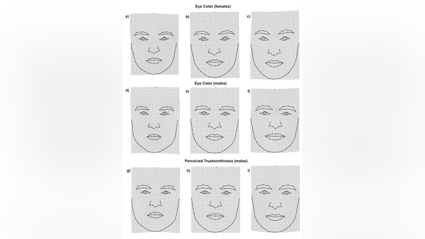 Researchers found links between eye color, face shape and perceived trustworthiness in men.