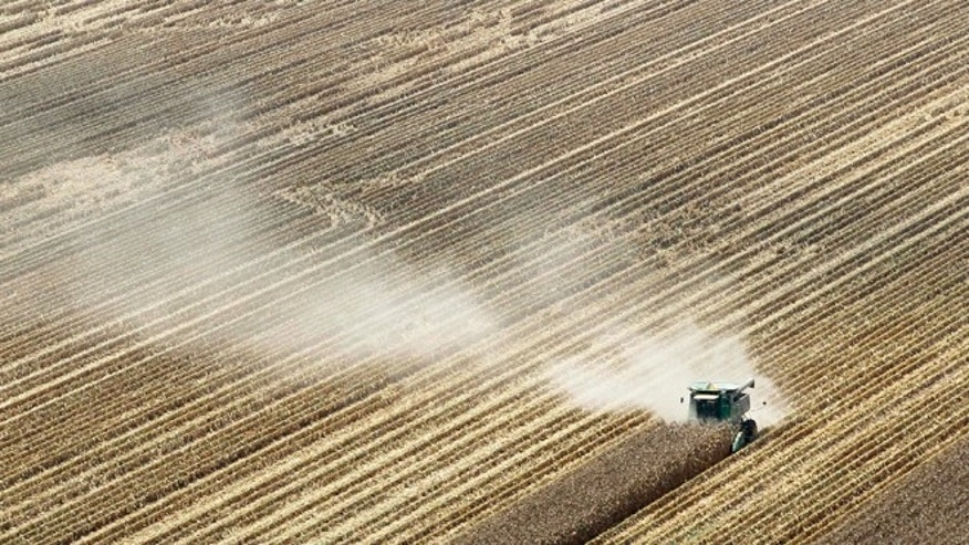 Aug. 16, 2012: Dust is carried by the wind behind a combine harvesting corn in a field near Coy, Ark., following a brutal combination of a widespread drought and a mostly absent winter that pushed the average annual U.S. temperature last year up.