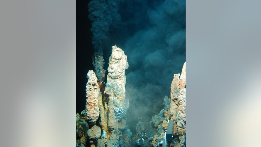 Life may have gotten started in hydrothermal vents where acidic seawater met with bitter alkaline fluid from the Earth's crust