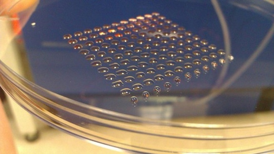 Researchers have developed a 3D printer that prints human embryonic stem cells.
