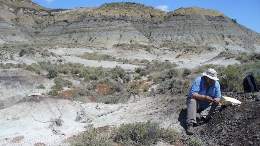 July 6, 2012: Paul Renne collects a volcanic ash sample from a coal bed in Montana, within a few centimeters of the dinosaur extinction layer. Two studies better explain the Earth-shaking consequences of a catastrophic cosmic collision 66 million years ago when a comet or asteroid smashed into the Gulf of Mexico.